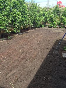 Tilled Garden Plot