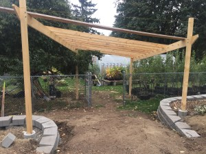 Arbor Under Construction with Greenhouse