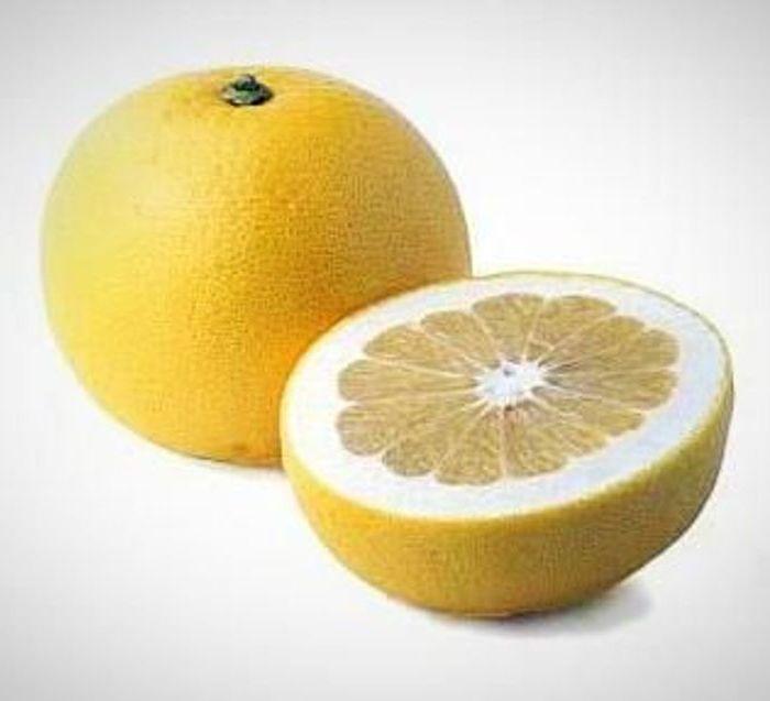 grapefruit oro blanco