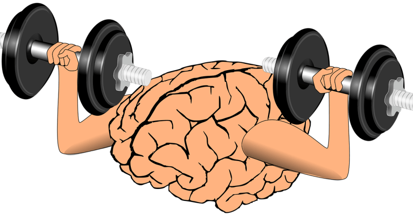THE FIVE PILLARS OF A FUNCTIONAL AND HEALTHY BRAIN