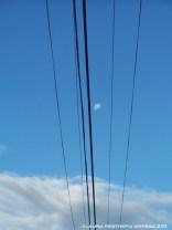 australia brisbane moon