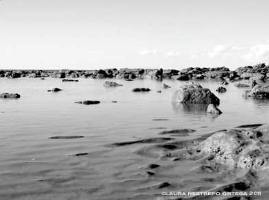 australia hervey bay beach 2