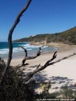 australia moreton island honeymoon bay