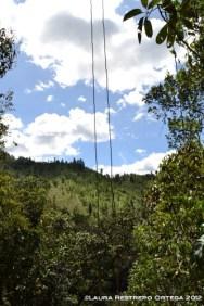 lianas, montaña, cielo azul