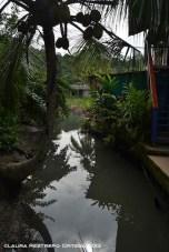 sapzurro 19 rio