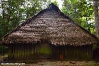 El Cocotal 19