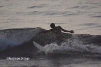 Piyi surf 28