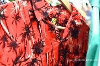 Mercadito Tropical Palomino Bonanza Clan 10