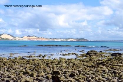 Baia dos Golfinhos Pipa 4