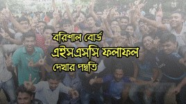 HSC Result Barisal Board