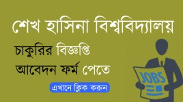 sheikh hasina university job circular