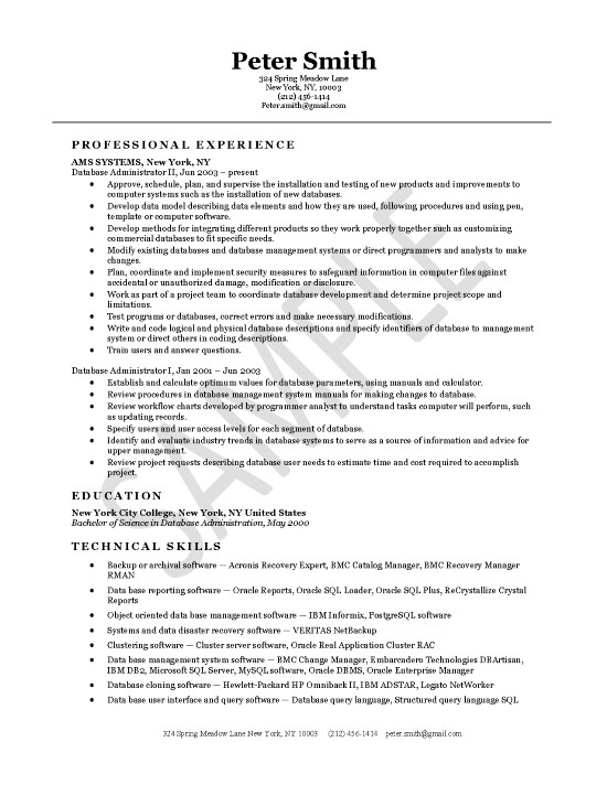 Database Administrator Resume Example