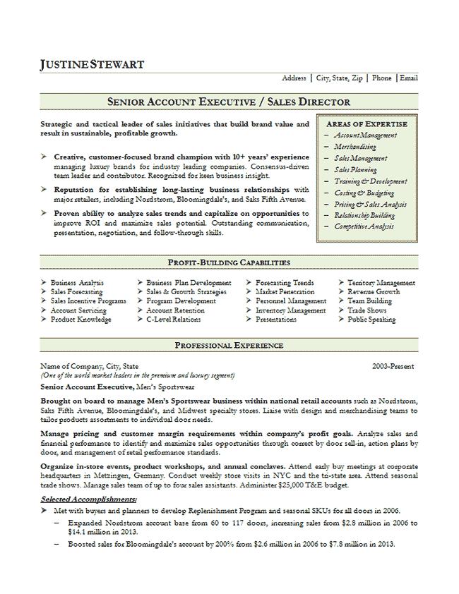 Sales Account Executive Resume Example