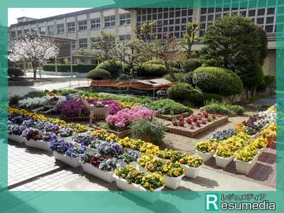 清原果耶 美津島中学校