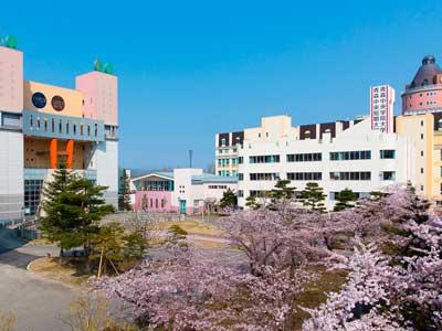 王林 青森中央学院大学