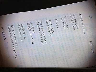 小保方晴子 卒業文集
