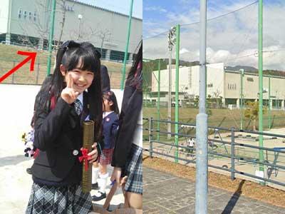 反田葉月 小学校比較画像