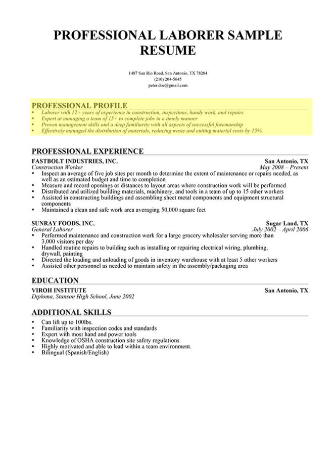 professional profile resume template
