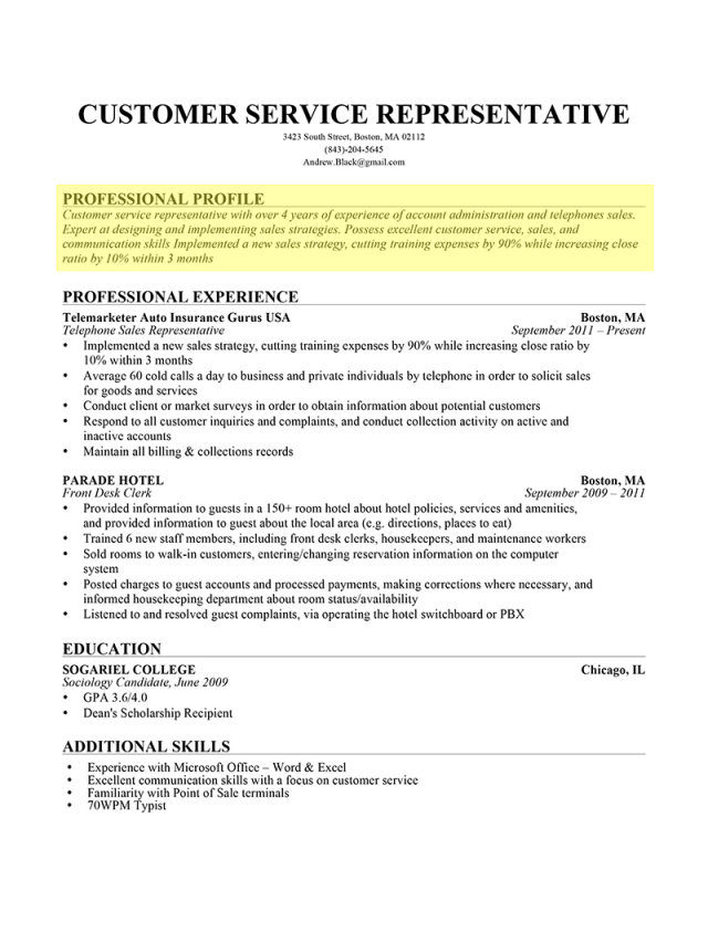 Resume Professional Profile Examples - How to Write a Resume