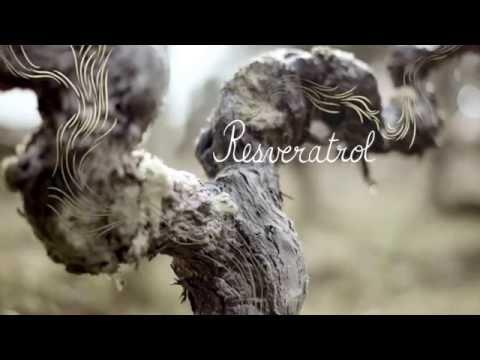 Caudalie – Resveratrol