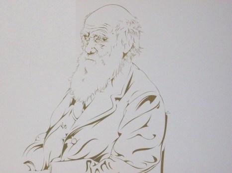 Dibujo de Darwin. (En el Museo de la Evolución Humana de Burgos)