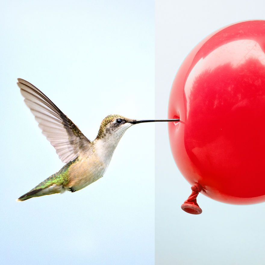 This-artist-combines-photographs-to-create-surreal-scenes-from-everyday-life-5dba3cc6de16f__880