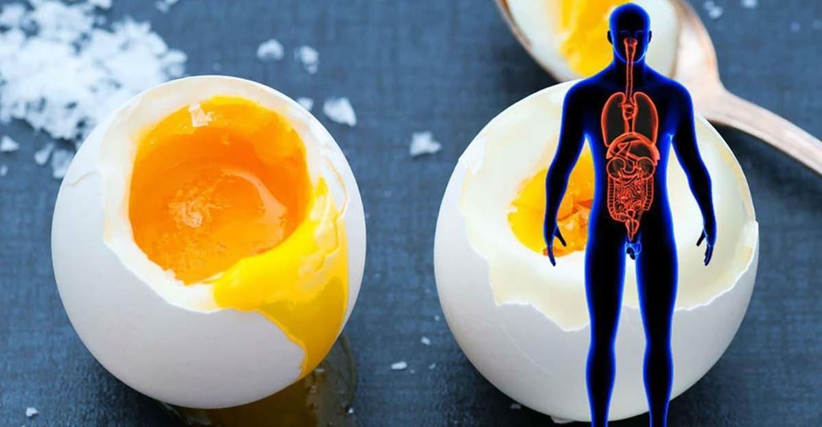 11 BENEFICII – Ce se va întâmpla dacă veți mânca două ouă pe zi