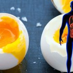 11 BENEFICII — Ce se va întâmpla dacă veți mânca două ouă pe zi