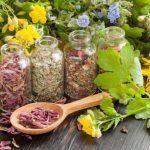 Medicina tradițională: 22 Rețete / Remedii pentru probleme de sănătate