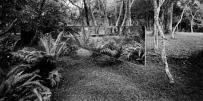 Solano_Benitez_-_Father's_Tomb_1