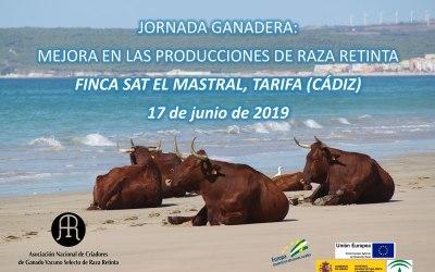 """Jornadas Ganaderas de la Raza Retinta en la Finca """"El Mastral"""" de Tarifa"""