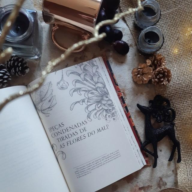 Resenha As Flores do Mal de Charles Baudelaire Edição Especial Martin Claret