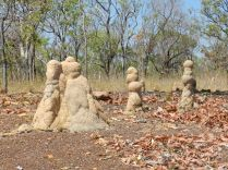 Termite Mounds, NT