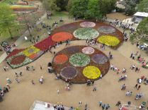 View from the top, Floriade