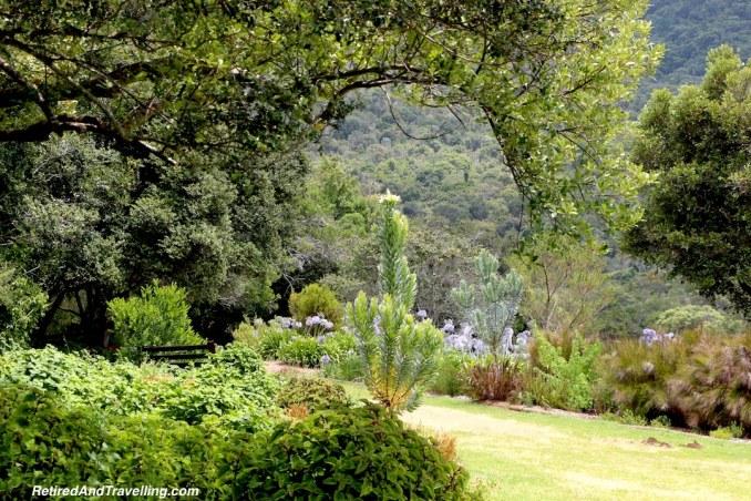 Gardens - Relax in Kirstenbosch Gardens.jpg