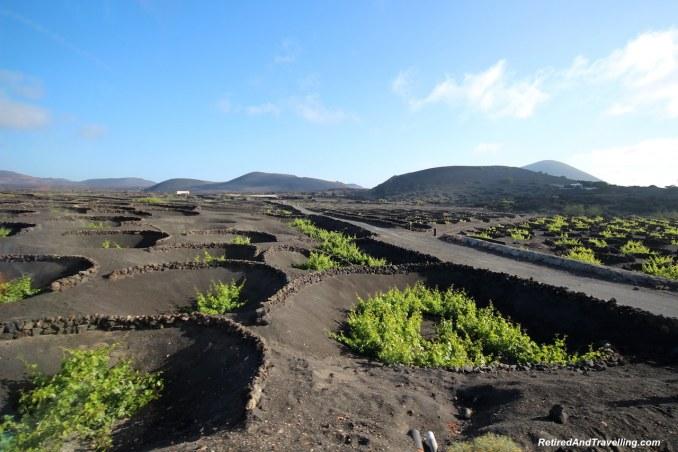 Black Lava Wine Fields - Colours Of Lanzarote.jpg