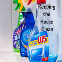 Keeping the House Clean