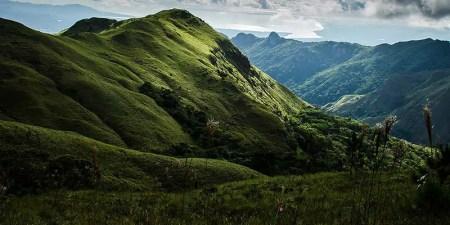 Panama mountain Rain Forests
