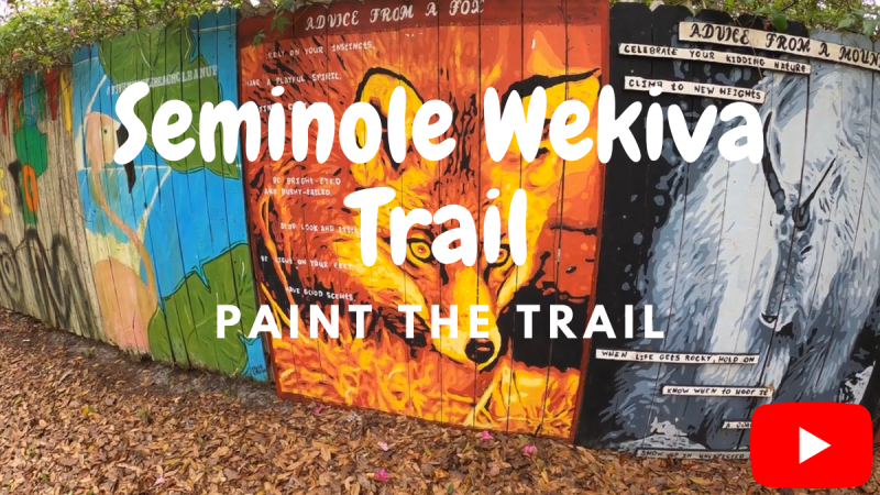 Paint the Trail