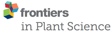 frontiers in plant science – Retraction Watch