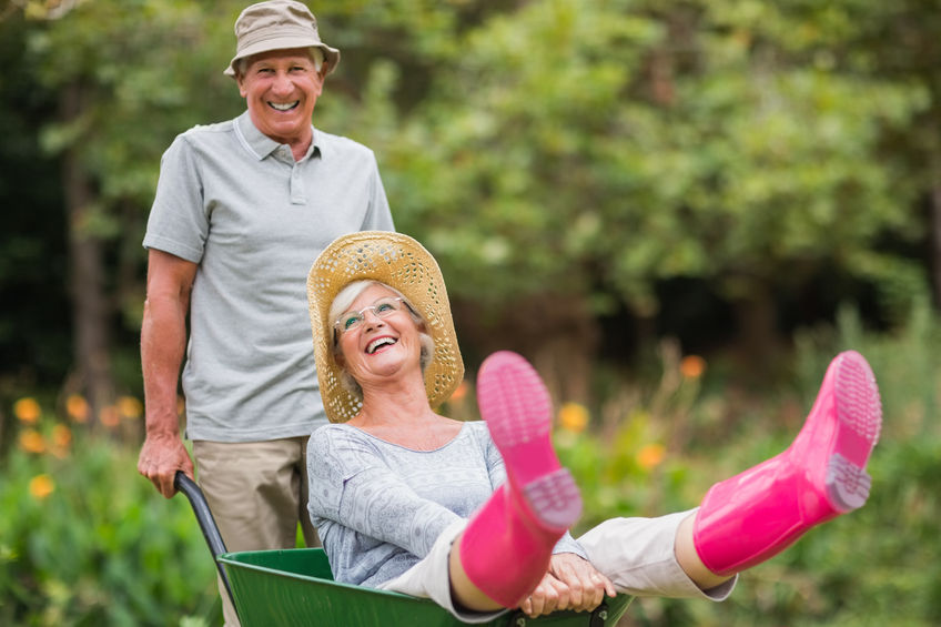 42215506 - happy senior couple playing with a wheelbarrow in a sunny day