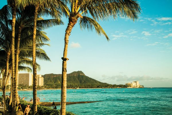 Travel Escort: Oahu, Hawaii