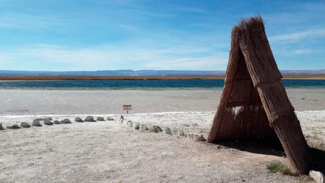Um passeio pelas Laguna Baltinache e Laguna Cejar, Atacama