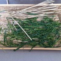 藁以外で藁苞納豆が作れるか試してみた(準備編)