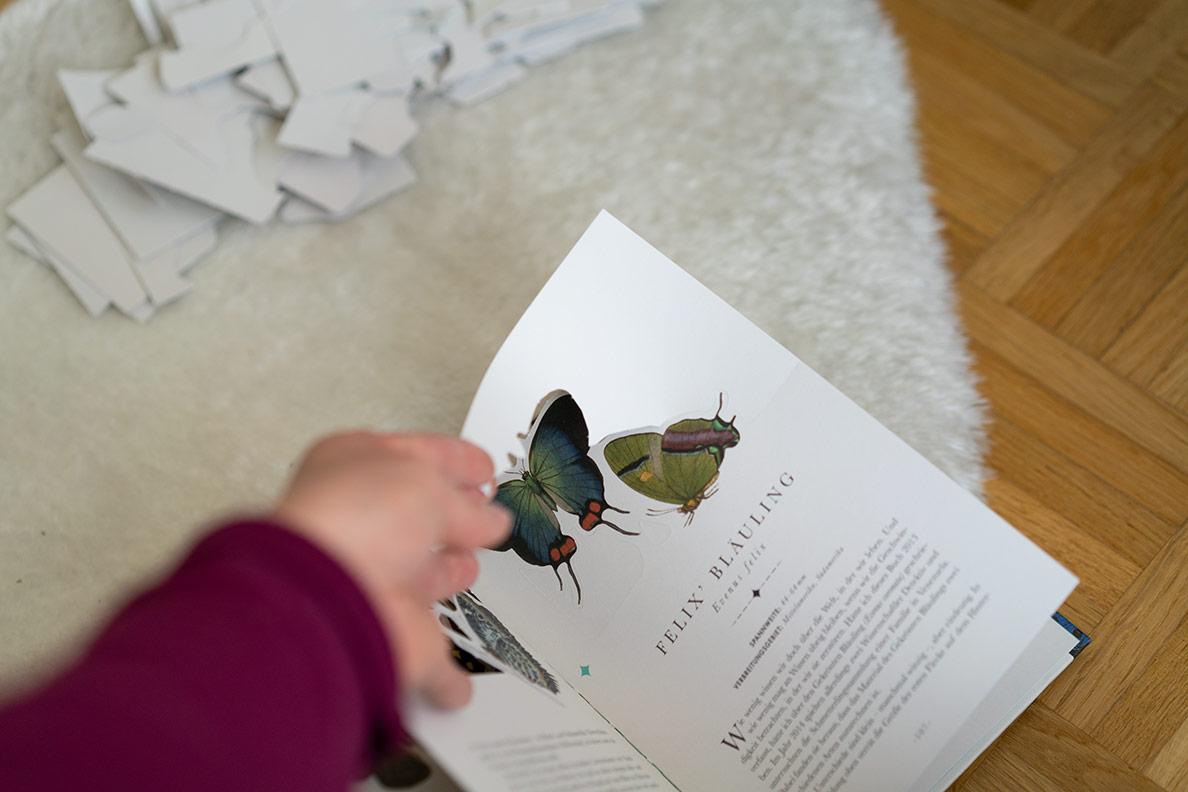 RetroCat beim Heraustrennen der Elemente aus dem Schmetterlings-Buch