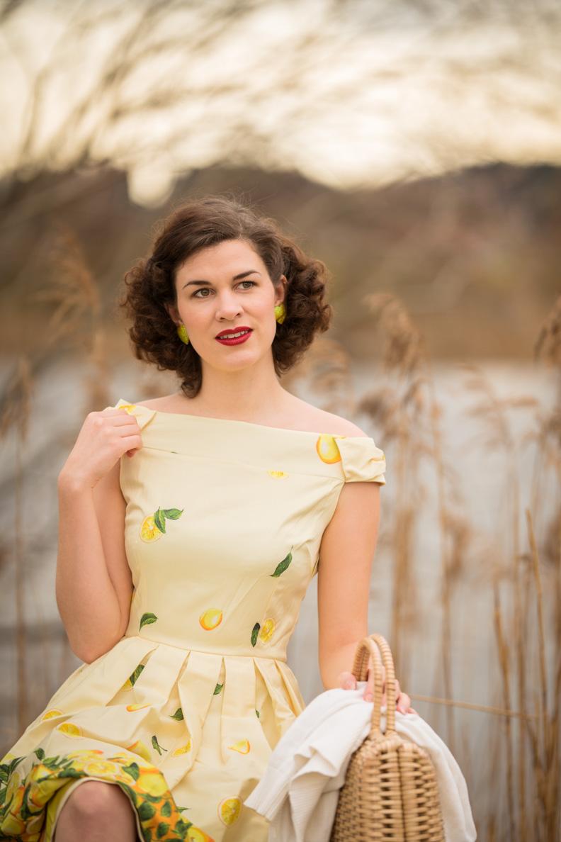 RetroCat in einem Kleid mit Zitronenprint im Frühling