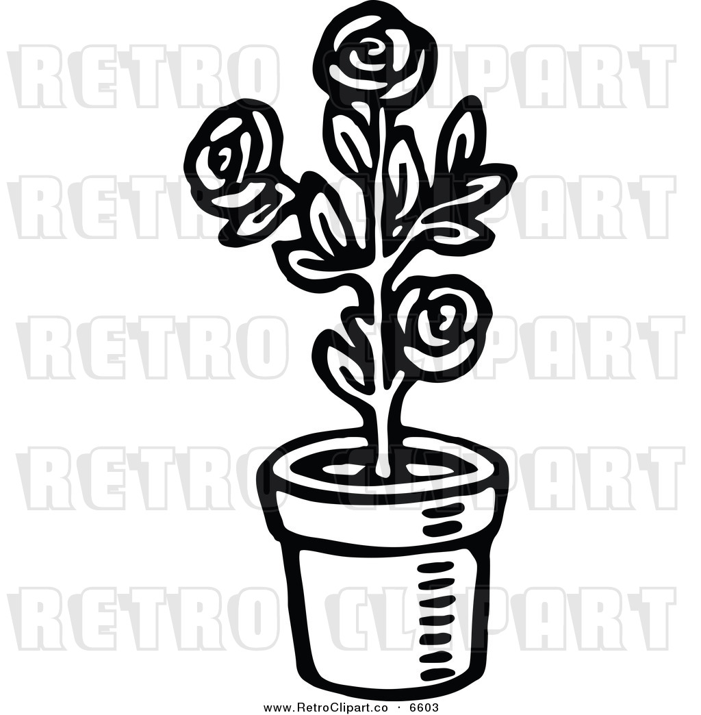 Potted Plants Black And White Clipart