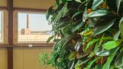 Nedlaw Living Wall Biofilter