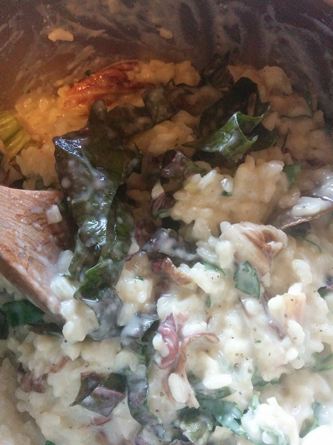 Radicchio & Gogonzola Risotto from Slow