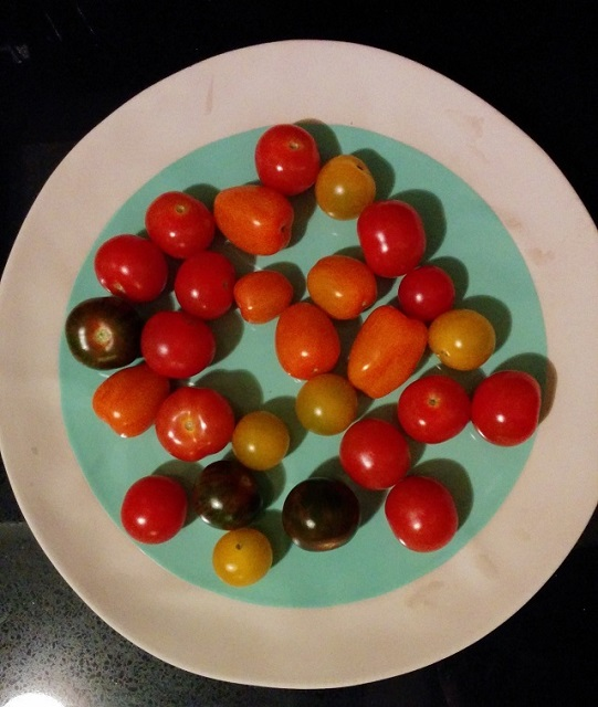 Best Tomato Salad2